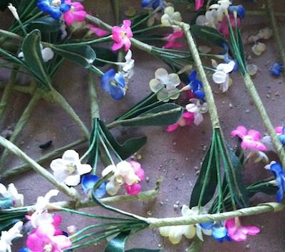 Flowersplus