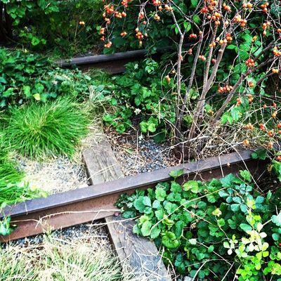 Highline3