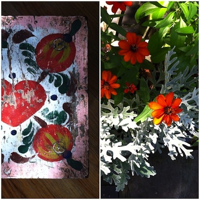Stoolflowers