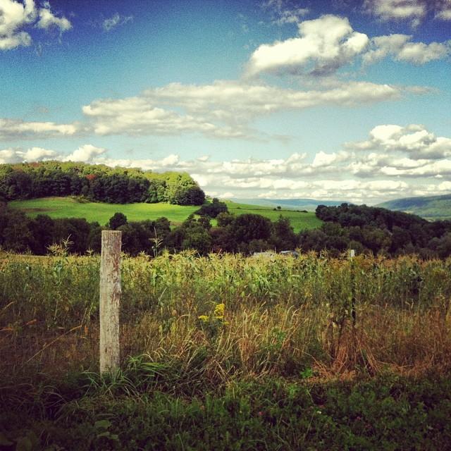 Vermont14