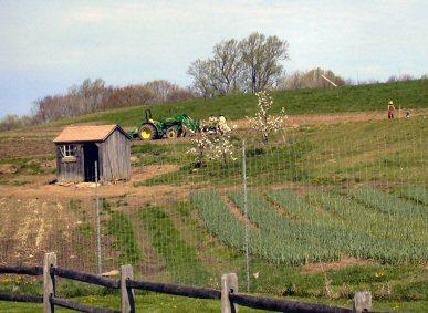 Farm400_2
