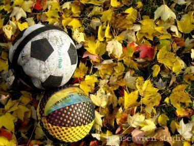 Soccerlvs7x